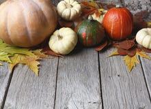 Marco del otoño de flores secadas en la madera blanca, fondo Fotos de archivo
