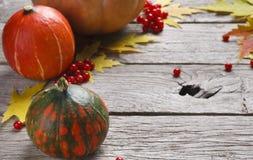 Marco del otoño de flores secadas en la madera blanca, fondo Imagenes de archivo