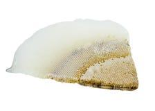 Marco del panal de abejas Fotos de archivo