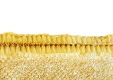 Marco del panal de abejas Foto de archivo libre de regalías