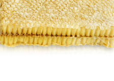 Marco del panal de abejas Foto de archivo
