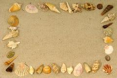 Marco del shell Fotos de archivo libres de regalías