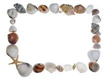 Marco del shell Foto de archivo libre de regalías