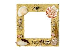 Marco del shell del mar Foto de archivo libre de regalías