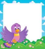Marco del tema del pájaro   Fotografía de archivo libre de regalías