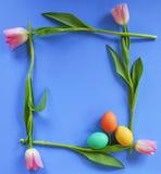 Marco del tulipán con los huevos de Pascua Fotografía de archivo libre de regalías