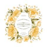 Marco del vintage de flores amarillas en un fondo blanco Fotografía de archivo libre de regalías