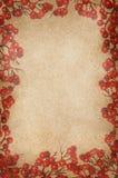 Marco del vintage de las bayas del acebo de la Navidad Imagen de archivo