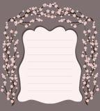 Marco delicado de Sakura Imagen de archivo libre de regalías