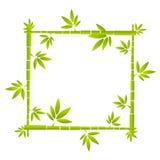 Marco divertido de bambú del vector Fotografía de archivo
