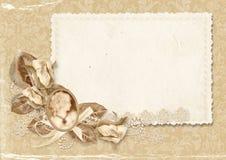 Marco elegante de la vendimia con el camafeo Foto de archivo