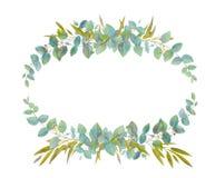 Marco elegante floral libre illustration