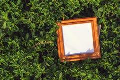 Marco en blanco en la hierba al aire libre Fotografía de archivo libre de regalías