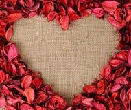 Marco en forma de corazón hecho de los pétalos rojos Imágenes de archivo libres de regalías