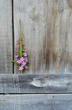 Marco floral con el flor rosado en fondo de madera Fotografía de archivo