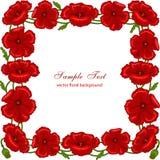 Marco floral con las amapolas rojas Imagenes de archivo