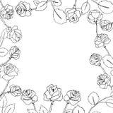 Marco floral con las flores drenadas mano Imágenes de archivo libres de regalías