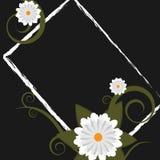 Marco floral de Grunge - vector Fotos de archivo