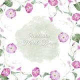 Marco floral de la acuarela Fotografía de archivo