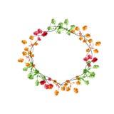 Marco floral de la acuarela del vector con las flores salvajes Fotografía de archivo