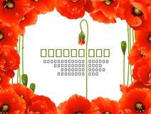 Marco floral de la amapola Imagen de archivo libre de regalías