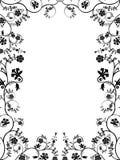 Marco floral del vector. Fotografía de archivo