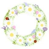 Marco floral del vector Ejemplo con la guirnalda floral y con el pl ilustración del vector