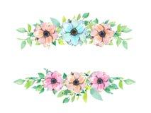 Marco floral del verano de la primavera de la acuarela, plantilla, bandera Las anémonas diseñan stock de ilustración
