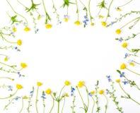 Marco floral hecho de las flores amarillas y de los pensamientos de los ranúnculos aislados en el fondo blanco Visión superior En fotos de archivo libres de regalías