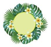 Marco floral Hojas y flores tropicales Foto de archivo