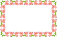 Marco floral rosado y verde simétrico Fotografía de archivo libre de regalías