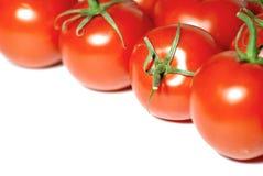 Marco fresco de los tomates Imagen de archivo