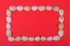 marco hecho de las conchas marinas que mienten en fondo rojo imagenes de archivo