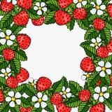 Marco hermoso de la composición de las fresas Imagen de archivo libre de regalías