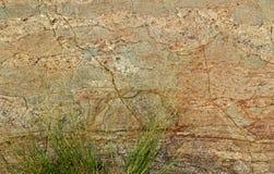 Marco horizontal muy bonito de la roca agrietada con el fondo natural de la textura de la hierba verde Foto de archivo
