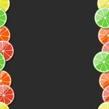 Marco inconsútil de la fruta Fruta cítrica, limón, cal, naranja, mandarina, pomelo Ilustración del vector Imagen de archivo libre de regalías