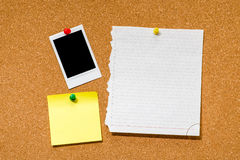 Marco inmediato en blanco de la foto en corkboard Fotos de archivo libres de regalías