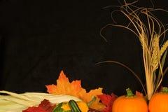 Marco IV del otoño Foto de archivo