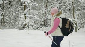 Marco lento de una mujer adulta que camina a través del bosque Podemos ver todos los detalles de su ropa, a saber, un casquillo r almacen de video