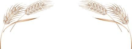 Marco maduro de los oídos del trigo del oro, frontera o elemento de la esquina Imagen de archivo
