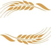 Marco maduro de los oídos del trigo del oro, frontera o elemento de la esquina stock de ilustración