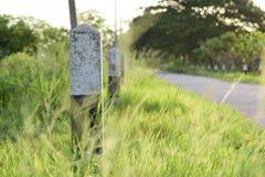 Marco miliário e estrada com grama Fotos de Stock