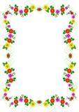 Marco multicolor de la flor Imagenes de archivo
