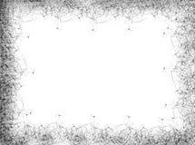 Marco negro Imagen de archivo