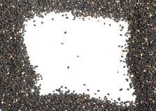 Marco negro del sésamo Fotografía de archivo libre de regalías
