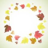 Marco o fondo del otoño con las hojas Foto de archivo libre de regalías