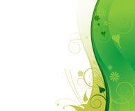Marco ondulado de la planta verde clara Fotografía de archivo