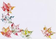 Marco otoñal de las hojas Imagen de archivo