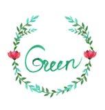 Marco oval de la acuarela de flores y de hojas Imagen de archivo libre de regalías
