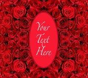 Marco oval sobre fondo de las rosas rojas Foto de archivo libre de regalías